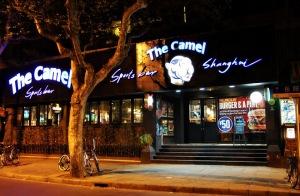 camel 003