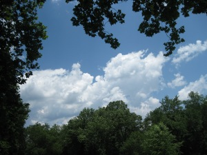 Clouds over Pennypack Park, Pine Road, Philadelphia, Pa.