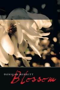 Blossom Book Cover