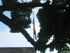 flag flying over loudenslager american legion post in fox chase